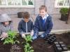 garden-planting-2012-2013-005