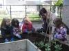 garden-planting-2012-2013-007