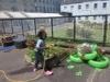 gardening 3